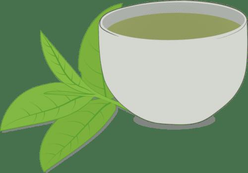 Czarka herbaty z liśćmi rysunek wektorowy
